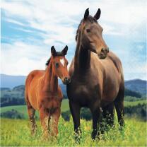 Pferde - Servietten, 16 Stück  33 x 33 cm