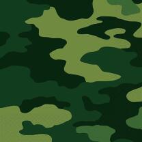 Camouflage -  16 Servietten, 33 x 33  cm