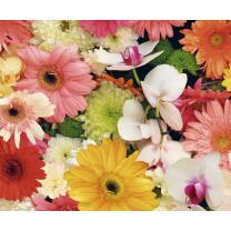 Motiv-Fotokarton Sommerblumen (128), 300 g/m²,...