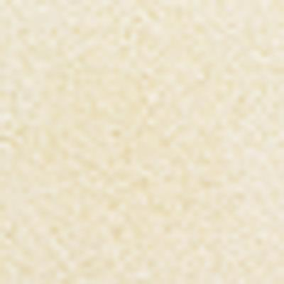 VersaColor Pigmentstempelkissen - weiß (VC-80)