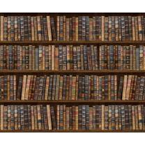 Motiv-Fotokarton Bibliothek/Bücher (83), 300...
