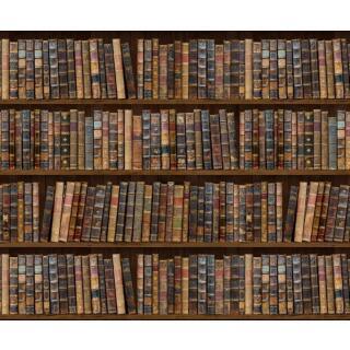 Motiv-Fotokarton Bibliothek/Bücher (83), 300 g/m²,  49,5cm x 68cm