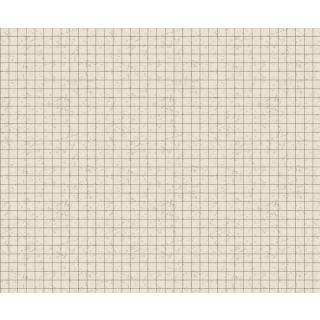 Motiv-Fotokarton Raster (100), 300 g/m²,  49,5cm x 68cm