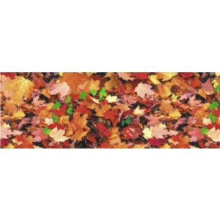 Motiv-Fotokarton Herbstlaub (10), 300 g/m²,  ca. 50 cm x 70 cm