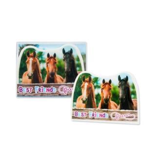 Radierer Pferdefreunde Forever