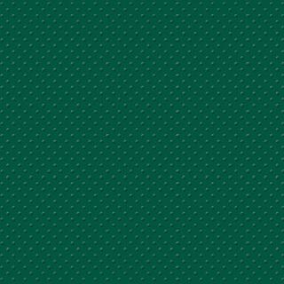 "Efco My Colors Cardstock Mini Dots 12 x 12""  30,6 x 30,6 cm (758) 216g/m²  dunkelgrün / Fiddeneck Fern"