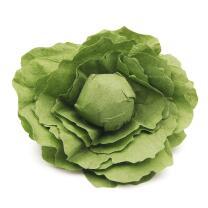 Erzi 12280 Salatkopf Kaufladenzubehör