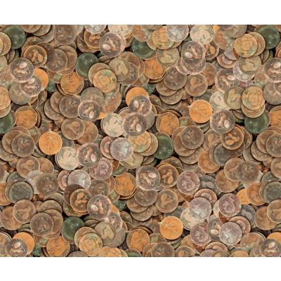 Motiv-Fotokarton Münzen (110), 300 g/m²,  49,5cm x 68cm