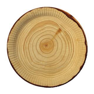 Teller - Pappteller 10 Stück, 23 cm Holzoptik für Grillparty - BBQ