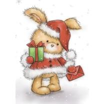 Wild Rose Studio CL511  Stempel clear stamp Christmas...