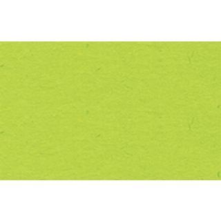 51 hellgrün