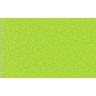 52 tropicgrün